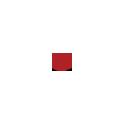 Логотип студия семейных и поздравительных фильмов Олеси КАШИЦЫНОЙ ТвоеКино