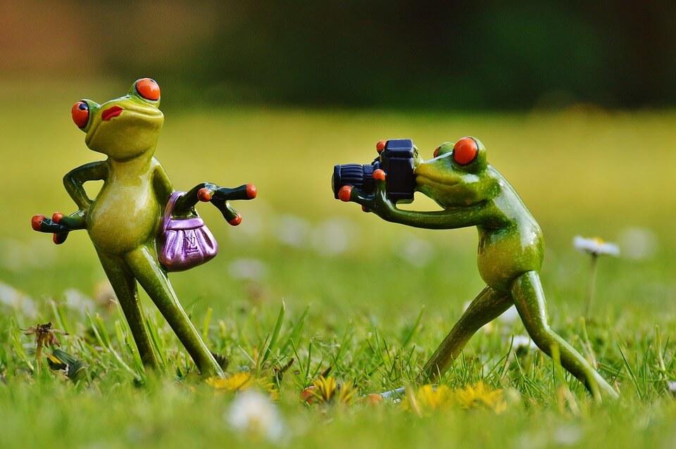 Мультяшка лягушка позирует перед камерой