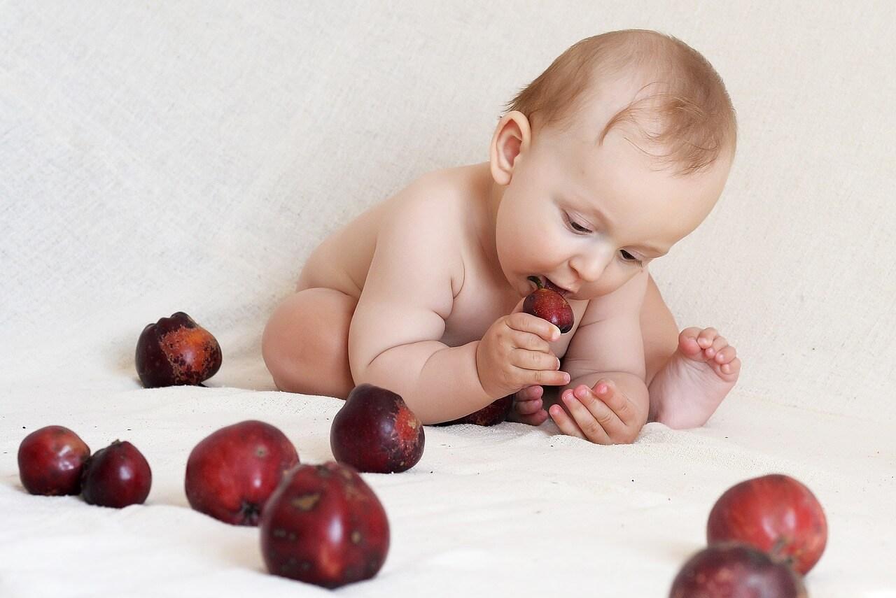 Малыш есть яблоки