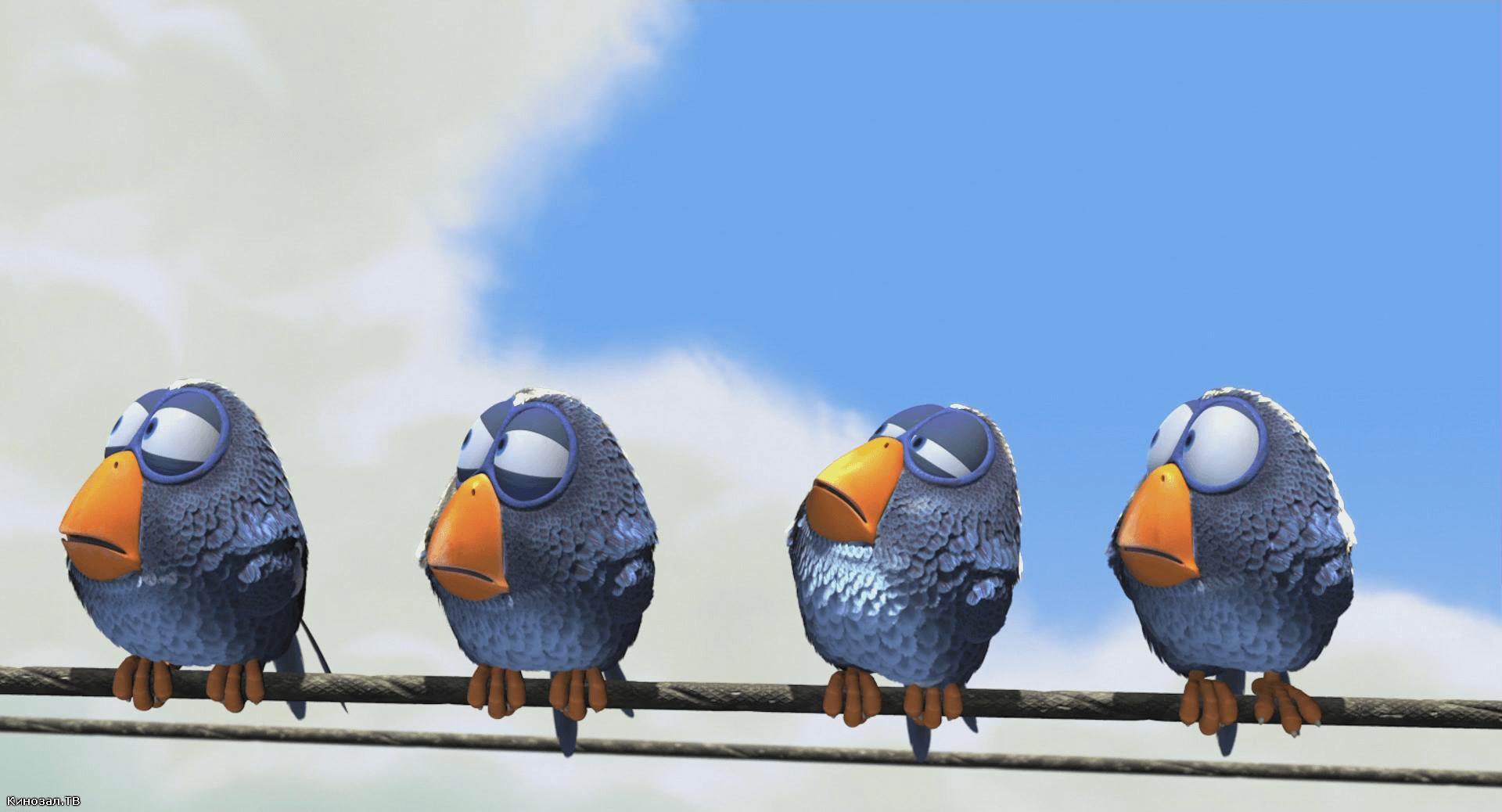 О птичках — Веселый красочный мульт, про птичек на проводе